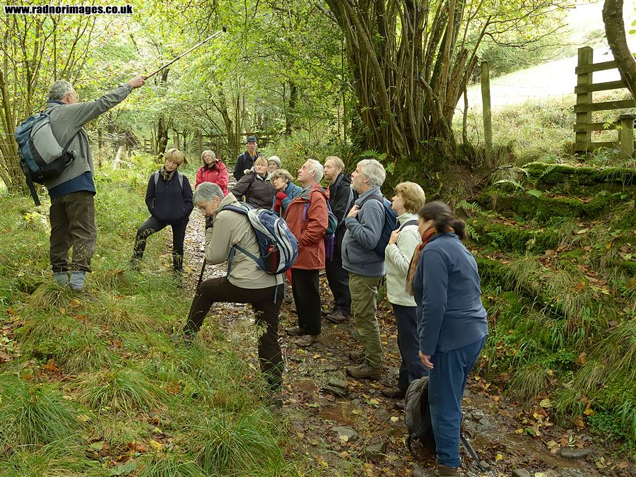 Walking Group in the Digedi Valley